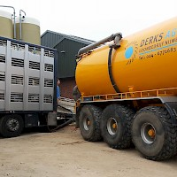 Manure removal and the loading of piglets can be done simultaneously